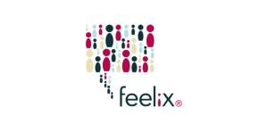 my feelix